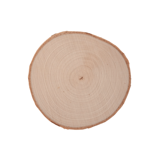 birch wood circles from Perm Russia for catholic faith formation retreat craft activity prayer piece memento painting prayers and sunsets