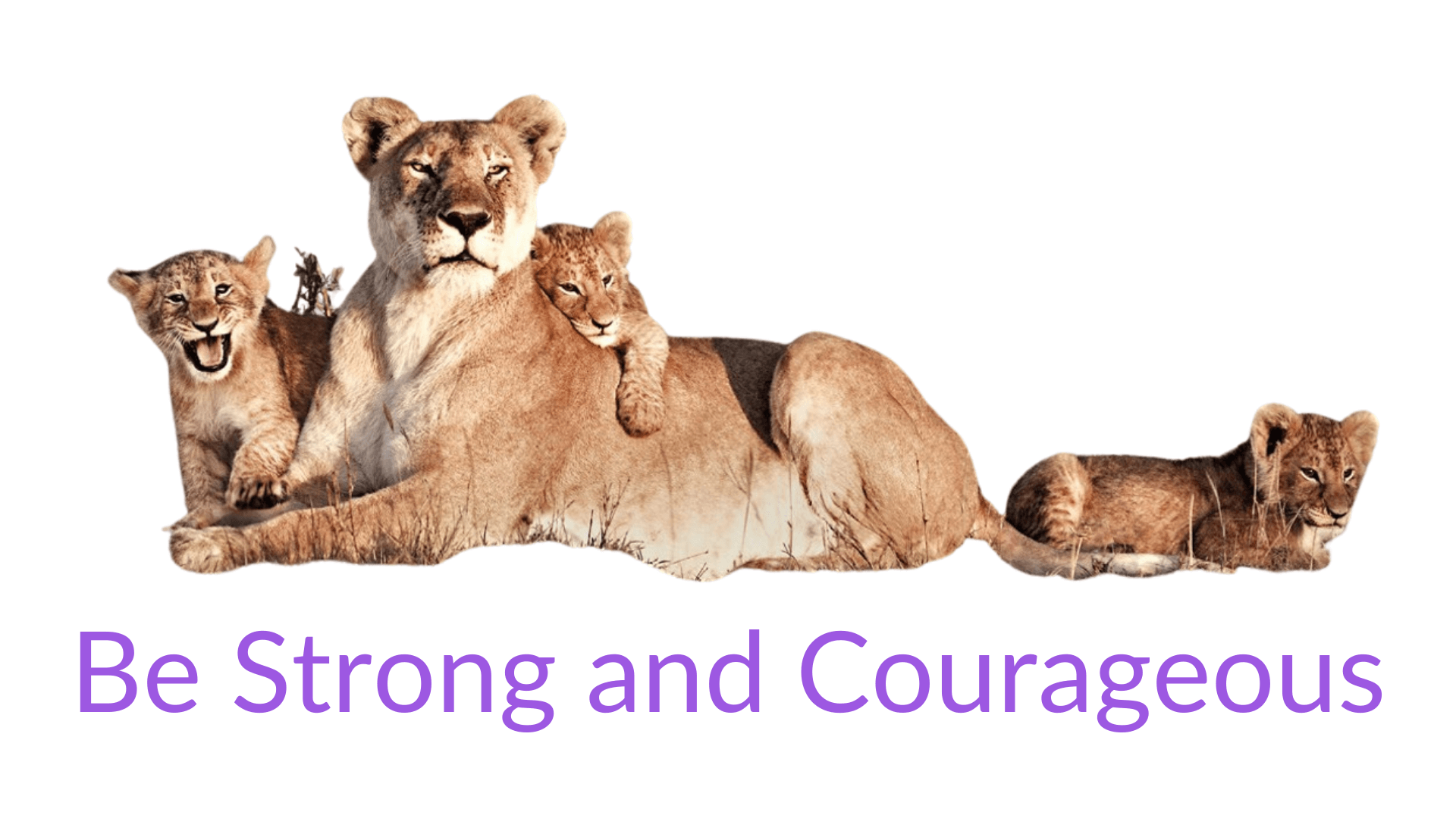 Be Strong and Courageous Year 5 or 6 online retreat for christian and catholic primary school retreats by Donna Power at Experience Wellbeing in Brisbane suitable for year 6 leadership retreat activities